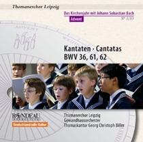 Daniel Ochoa - Bach Kantaten Thomanerchor